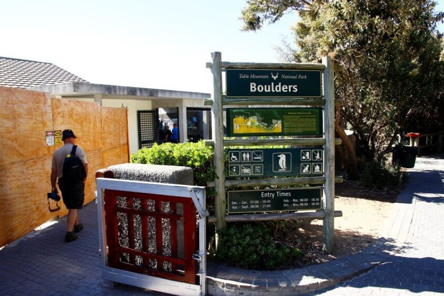 Day 4 - Table Mountain & Kirstenbosch (Full Day)