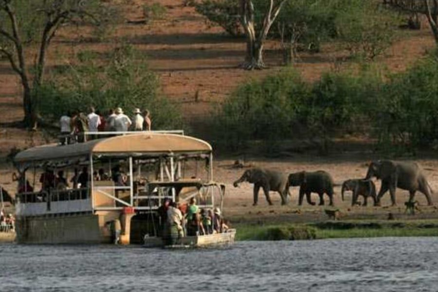 Day 3 - Chobe Forestry Area Lodge to Linyanti